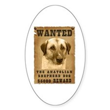 """Wanted"" Anatolian Shepherd Dog Oval Decal"