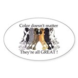 N6 Color Doesn't Matter Oval Bumper Stickers