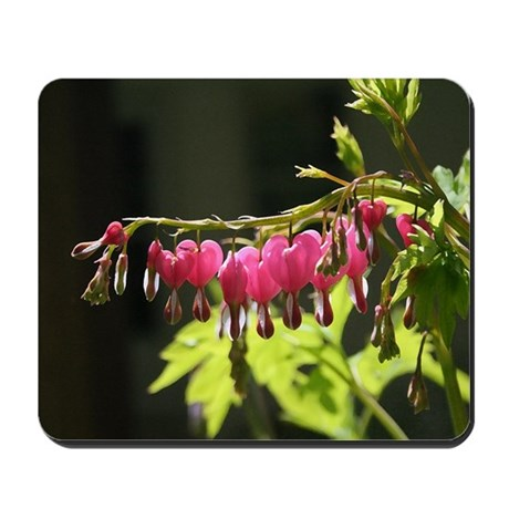 Bleeding Heart Dry Brush Mousepad