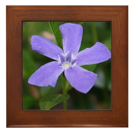 Periwinkle Framed Tile