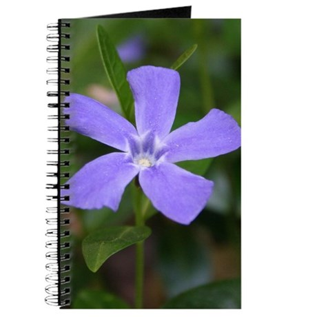 Periwinkle Journal