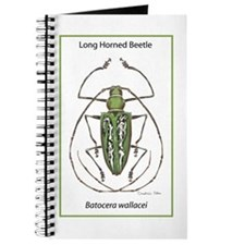 Long Horned Beetle Journal