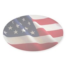 American Flag Oval Euro Decal