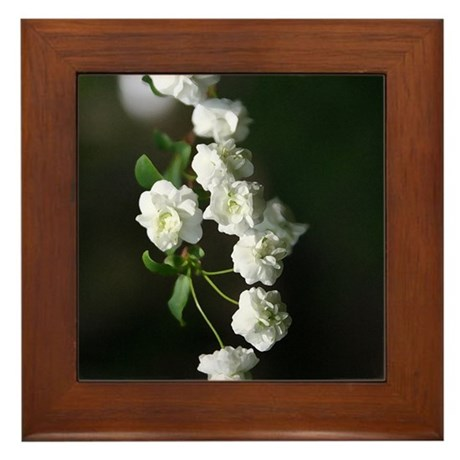Dainty Whites Framed Tile