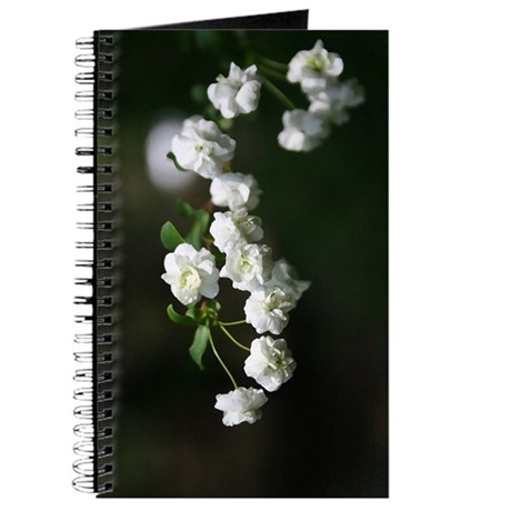 Dainty Whites Journal