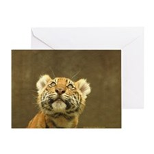 Little Tiger, Big World Greeting Card