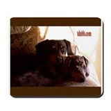The Dachshund Network Forums Mousepad