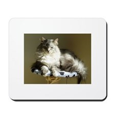 Funny Baskets Mousepad