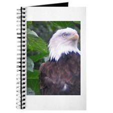 Eagle Portrait 1 Journal