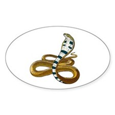 King Cobra 2 Oval Decal