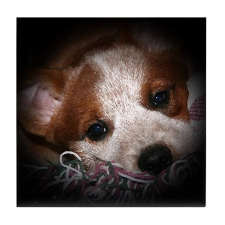 ACD Puppy Eyes Tile Coaster