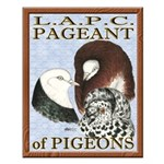 Pigeon Pageant1 Small Poster
