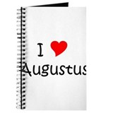 Cool Augustus Journal