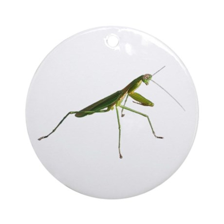 Praying Mantis Keepsake (Round)