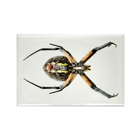 Spider Rectangle Magnet