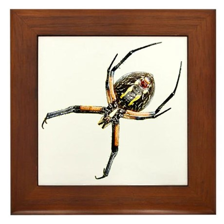 Spider Framed Tile
