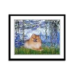 Lilies #6/Pomeranian #4 Framed Panel Print