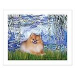 Lilies #6/Pomeranian #4 Small Poster