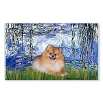 Lilies #6/Pomeranian #4 Sticker (Rectangle 10 pk)