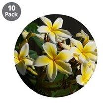 "Aloha Flowers 3.5"" Button (10 pack)"