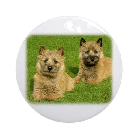 Cairn Terrier puppies 9W048D-035 Ornament (Round)
