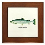 Wild Saltwater Steelhead Fish Framed Tile