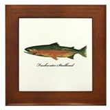 Freshwater Steelhead Trout Framed Tile