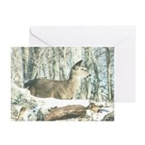 White Tailed Doe Greeting Cards (Pk of 10)