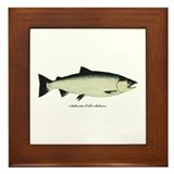 Coho Silver Salmon Framed Tile