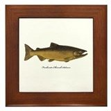 Chinook King Salmon Framed Tile