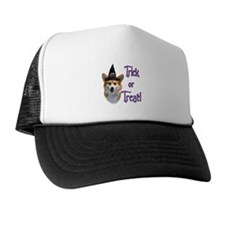 Pembroke Trick Trucker Hat