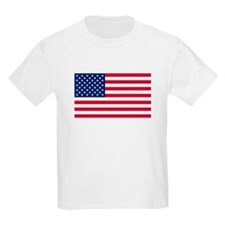 United States Flag Sticker T-Shirt