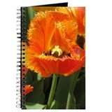 Red Fringed Tulip Journal
