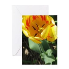 Cute Tulip bulbs Greeting Card