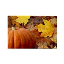 Pumpkin and Leaves Rectangle Magnet (10 pack)