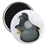 "English Trumpeter Blue 2.25"" Magnet (10 pack)"