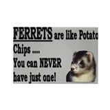 Ferrets are like Chips Rectangle Magnet (10 pack)