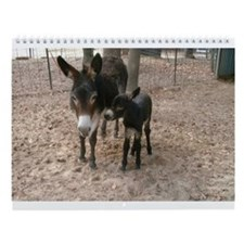 Donkeys 101 Wall Calendar