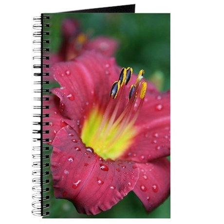 Scarlet Lily Drops Journal