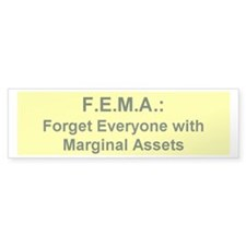 anti-fema Bumper Bumper Sticker