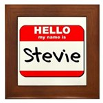 Hello my name is Stevie Framed Tile