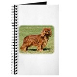 Cavalier King Charles Spaniel 9Y156D-130 Journal