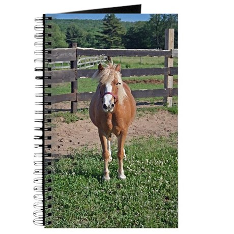 Pony Love (Brush) Journal