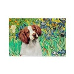 Irises/Brittany Rectangle Magnet (10 pack)