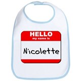 Hello my name is Nicolette Bib