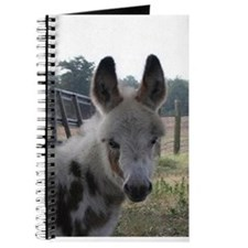 Cute Foal Journal