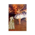 Dancer1/Wheaten T (7) Rectangle Magnet (10 pack)