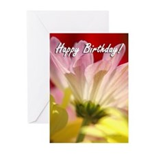 Daisy Splash Birthday Greeting Cards (Pk of 20)