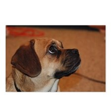 Dog-puggle Postcards (Package of 8)