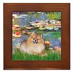 Lilies2/Pomeranian #4 Framed Tile